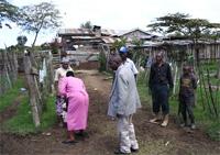 Visiting farmers in Kenya